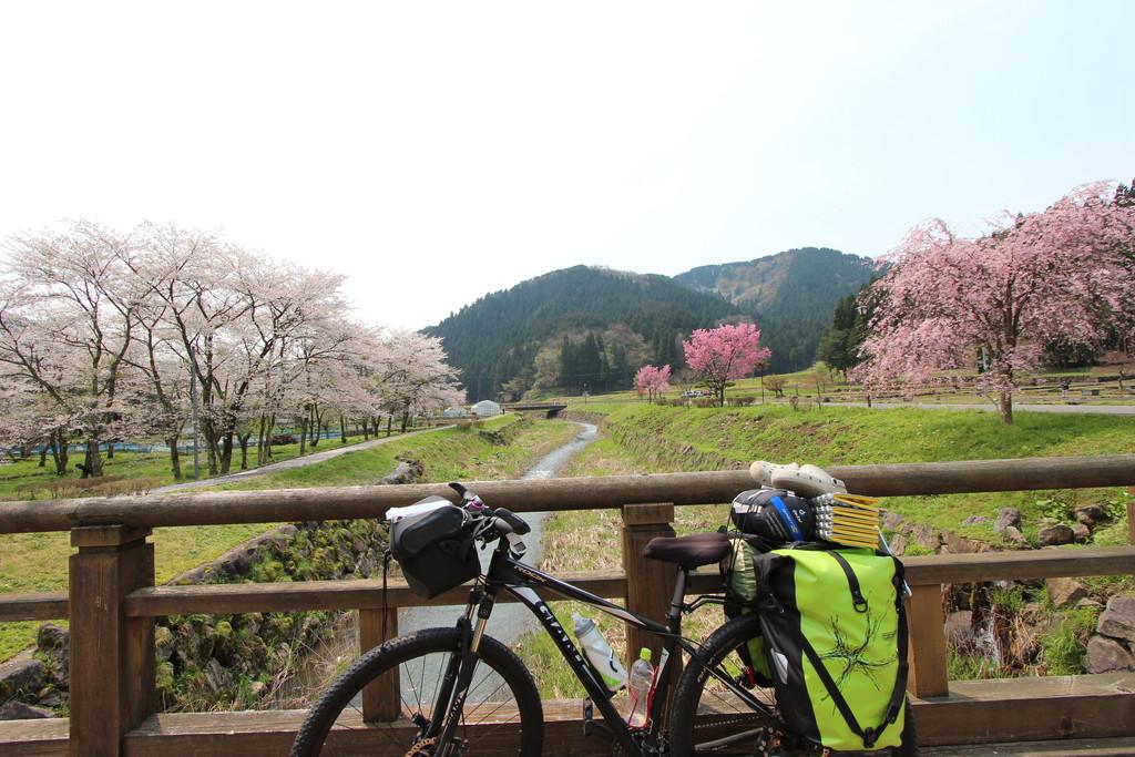 日本一周の出発時期はいつ頃がいい?春?秋?季節別の利点まとめ