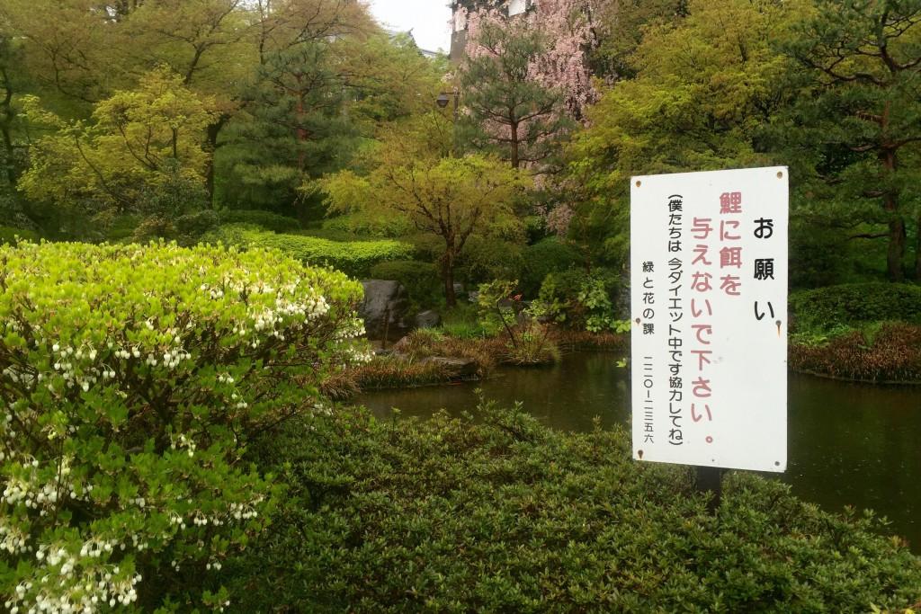 【日本一周】雨中の金沢散策、雨にて停滞!北海道・札幌からのご縁。