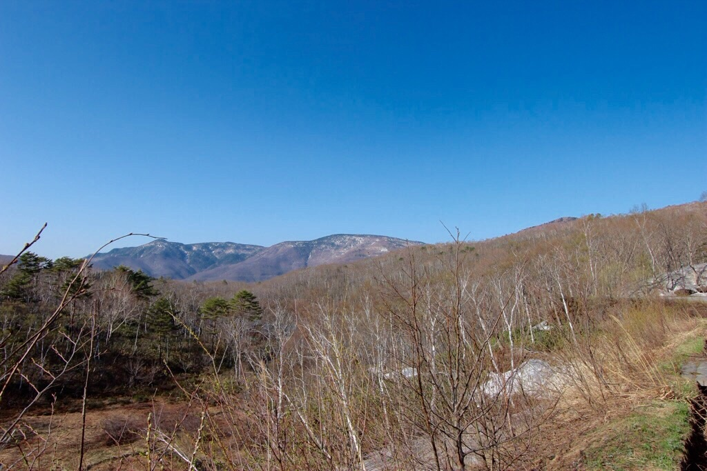 【日本一周】シラカバの森を発見!渋峠アタック1日目。