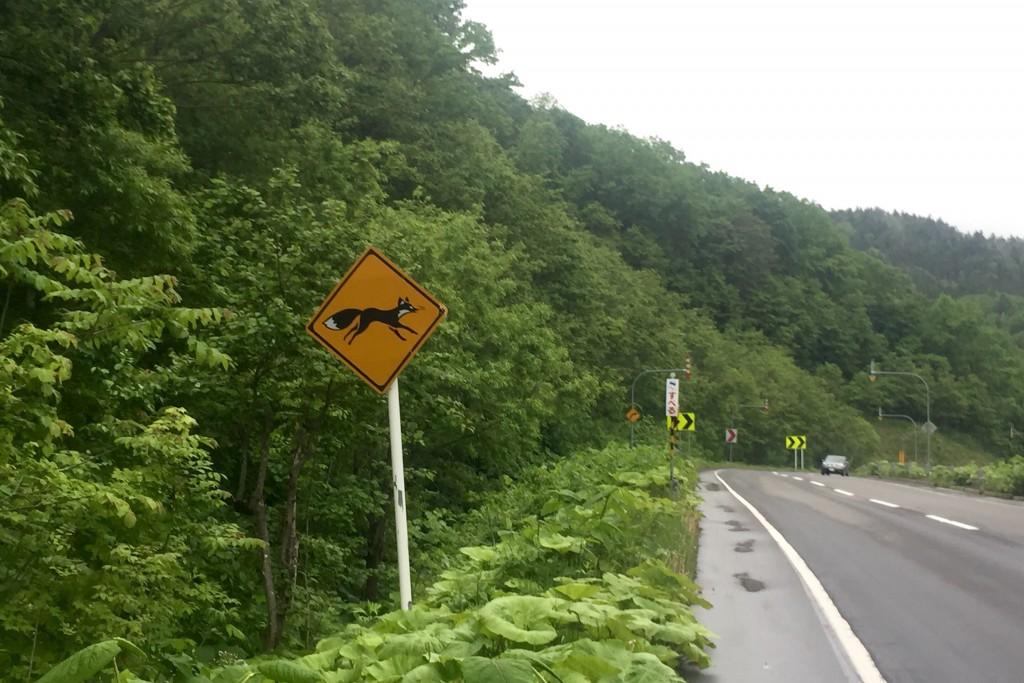 【日本一周】世にも奇妙な「キツネ注意」の看板!?霧の夕張国道を駆け抜ける。