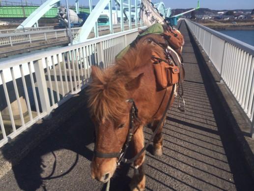 「馬に乗って日本縦断...?」様々な移動手段・方法で日本一周する旅人たちを紹介する