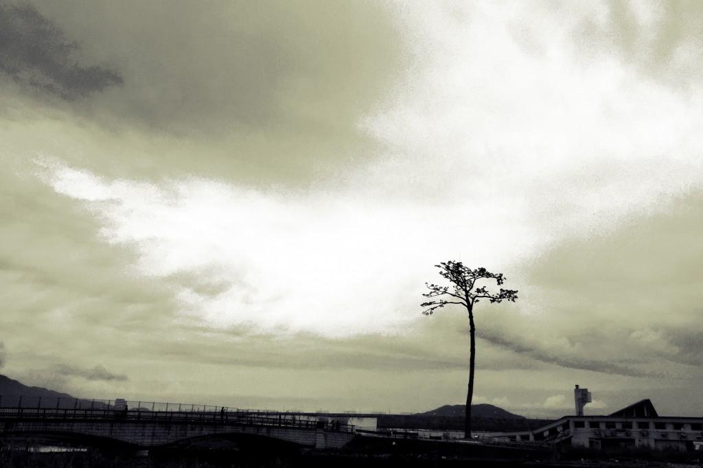 【日本一周】奇跡の一本松と度重なる出会い。「恩は返さなくていいので、もし困った人がいたら助けてあげてほしい」