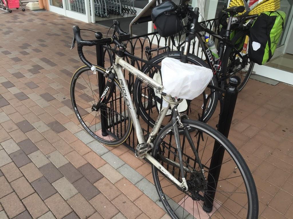 【日本一周】本日より琵琶湖一周開始!世界を飛び回って自転車で旅するおじいちゃんと遭遇。【草津市〜大津市】