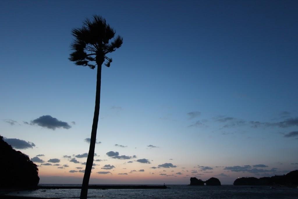 【日本一周】本日は梅三昧!「UME-1グルメ甲子園」と、白浜のとれとれ市場で梅天国。【みなべ町〜白浜町】