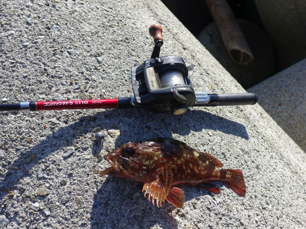 初心者でも簡単!「穴釣り」の極意と道具・釣果を上げるための全知識