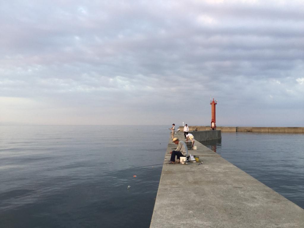淡路島の洲本港で夏タチウオ釣り調査!【ワインド釣法】