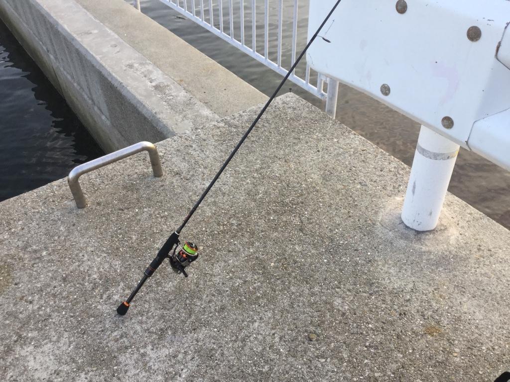 【1万円以下】安いタックルでメバリングをする方法。安い釣具でも十分釣れる!