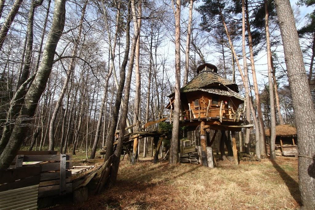 【八ヶ岳】森を開拓して作られた「廃材王国カナディアンファーム」が謎に面白かった件について