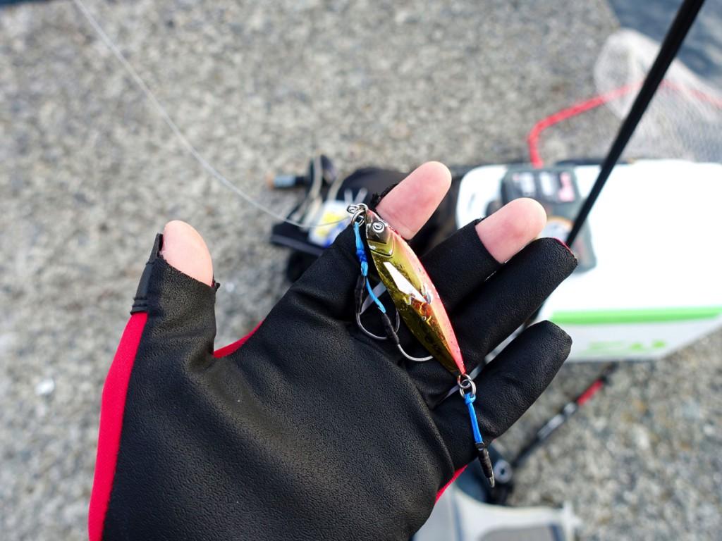 ライトショアジギングで釣れる魚種は?よく釣れる15種の解説と釣り方紹介