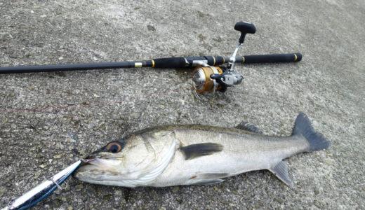【堤防釣り】ルアー釣りの基本マニュアル!これさえ読めば全てわかる