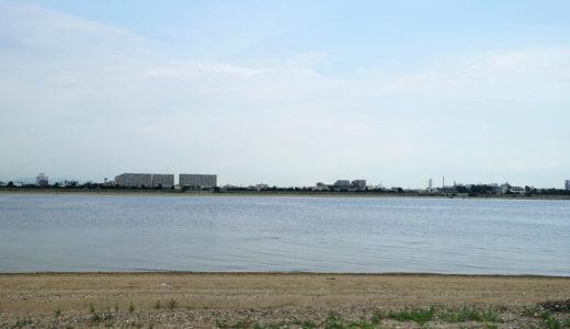 チニングで特に釣れる場所・ポイントを探す方法まとめ【運河・河口・漁港・サーフ】