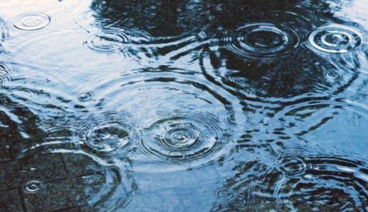 雨の日でも釣りにいくべき?雨が魚に与える影響と危険性まとめ
