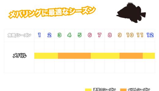 メバルが特に釣れる時期と季節・シーズンごとの攻略法【春・夏・秋・冬】