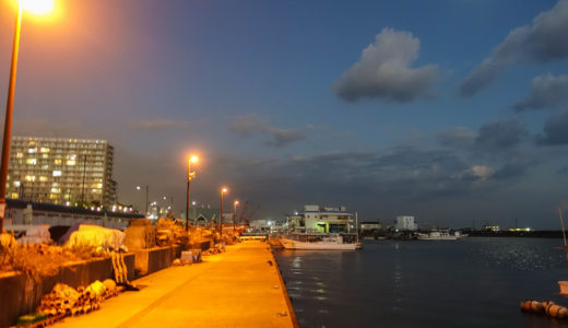 【ナイトゲーム】夜間にメバルを釣る方法とは?明暗の境目を意識して狙う