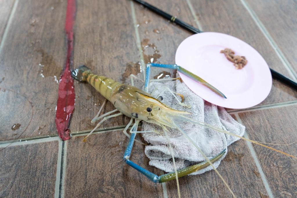 【超ローカル】バンコクのエビ釣り堀「ルカータチャルンナコン」でオニテナガエビを狙う!【アクセス情報まとめ】