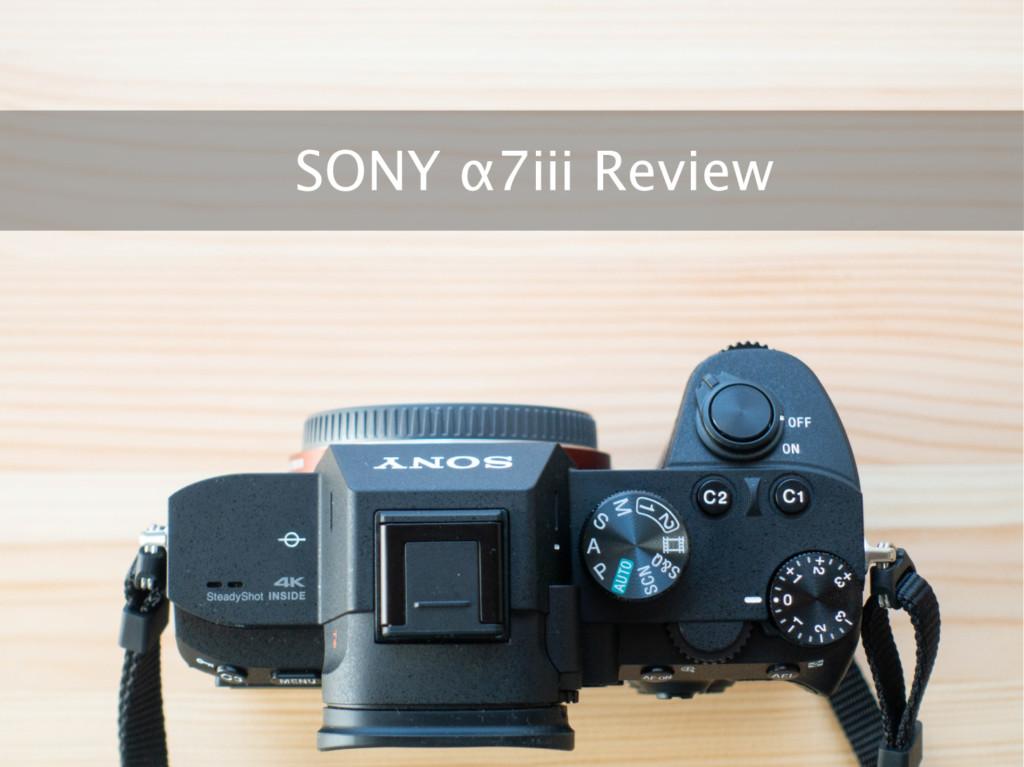 カメラ初心者が「SONY α7ⅲ」を購入した理由と長期海外使用レビュー【最強の入門用ミラーレス一眼】
