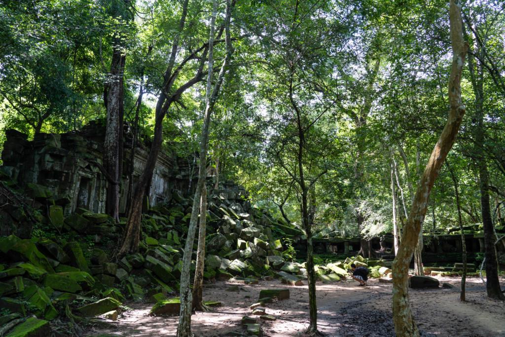 [画像40枚]森林に眠る巨大遺跡「ベンメリア」で廃墟めぐりを楽しむ!【アクセス・所要時間・ツアー情報】